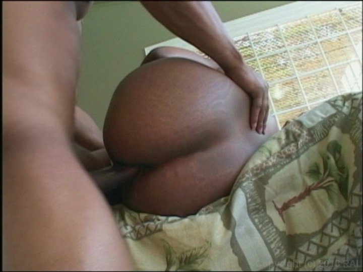 all dat azz 32 2005 videos on demand adult dvd empire
